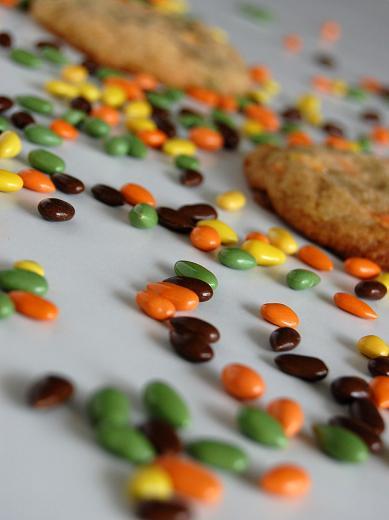 Dark Chocolate Covered Sunflower Seeds Recipe